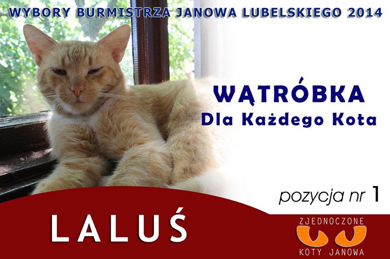 18 08 14 Lalus plakat - small